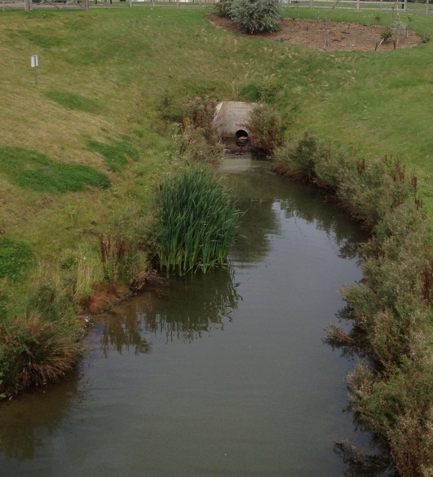 What are Sustainable Drainage Systems1